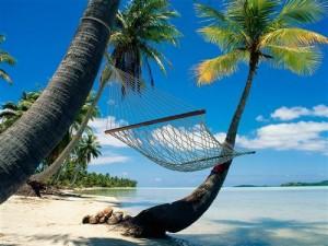 Vacances... Hamac-et-cocotier-300x225